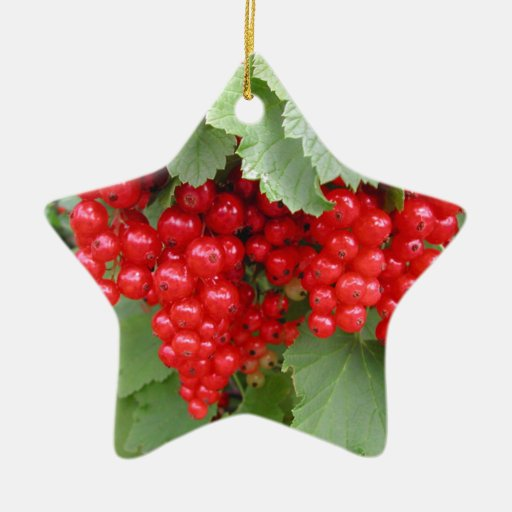 Red Currants on the Plant. Green Leaves. Christmas Tree Ornaments