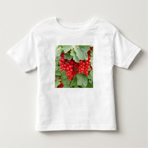 Red Currants on the Plant. Green Leaves. T Shirt