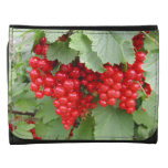 Red Currants on the Plant. Green Leaves. Wallet
