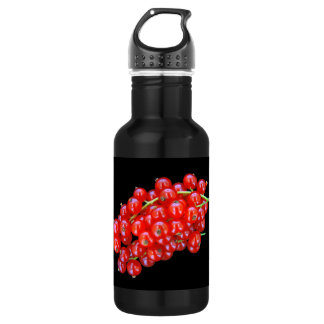 RED CURRENT BEERIES STAINLESS STEEL WATER BOTTLE
