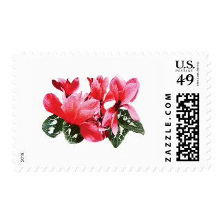 Red Cyclamen Postage