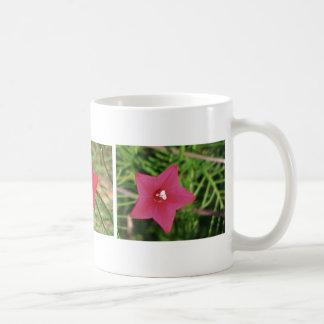 Red Cypress Vine Coffee Mug