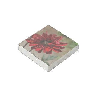 Red Dahlia Blossom Stone Magnet