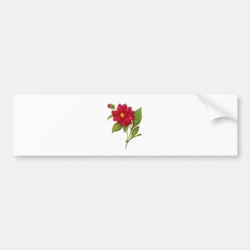 Red Dahlia by Pierre-Joseph Redoute Bumper Stickers