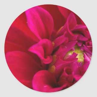 Red Dahlia Classic Round Sticker