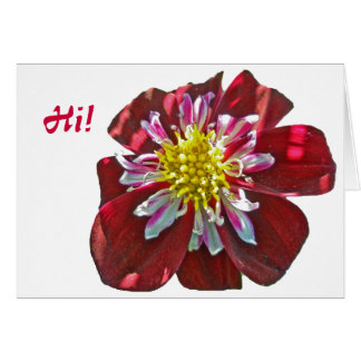 Red Dahlia Coordinating Items Note Card Hi