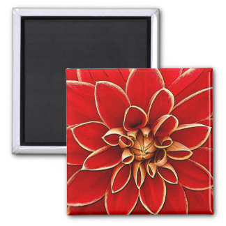 Red dahlia flower illustration 2 inch square magnet