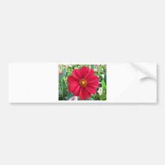 Red Dahlia Flower in a Garden Bumper Stickers