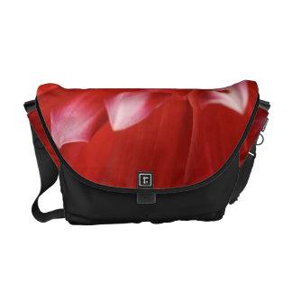 Red Dahlia - Medium BAG