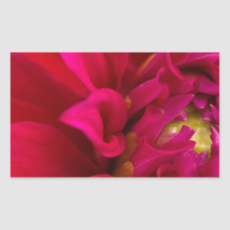 Red Dahlia Rectangular Sticker