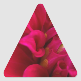 Red Dahlia Triangle Sticker