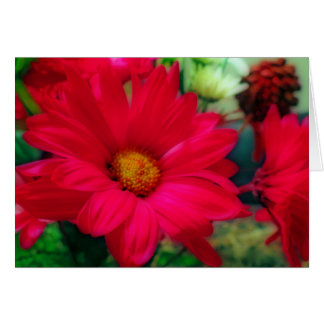 """""""Red Daisies"""" Card"""