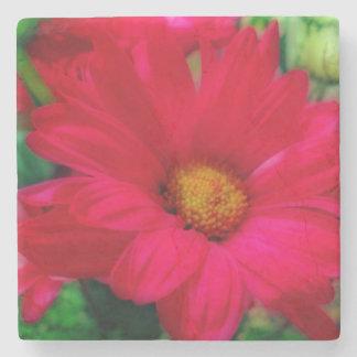 Red Daisy Coaster