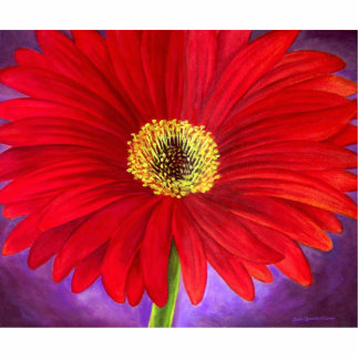 Red Daisy Flower Painting Art Photo Sculpture
