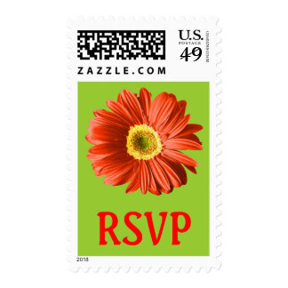 Red Daisy Flower RSVP Postage