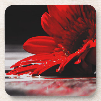 Red Daisy Gerbera Flower Beverage Coaster