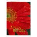 Red Daisy Happy Birthday Greeting Card