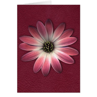 Red Daisy on Wine Leather Print Greeting Card