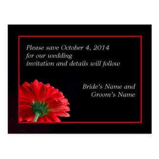 Red Daisy Save the Date Postcard