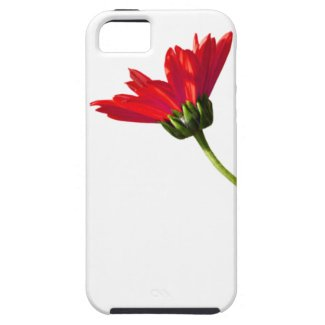 Red Daisy Simplicity iPhone 5 Cover