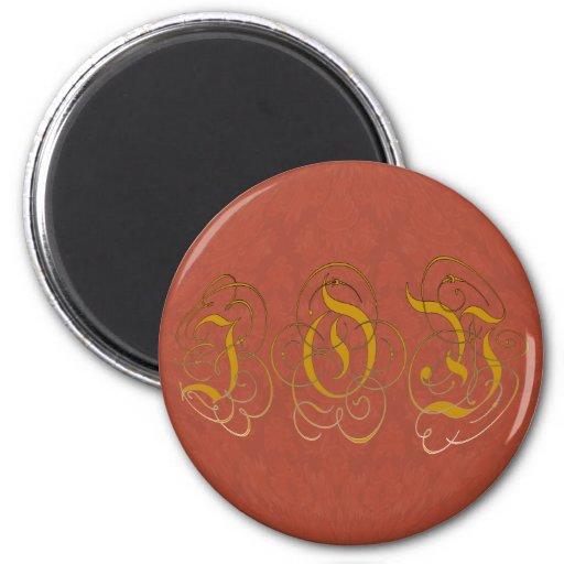 Red Damask Illuminated Joy Christmas Magnet
