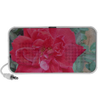 Red dark pink Rose Speaker System