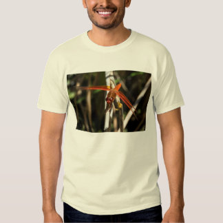 Red Darner Dragonfly T-shirt