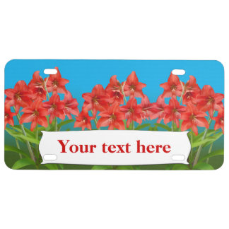 Red Day Lilies Customizable Text License Plate