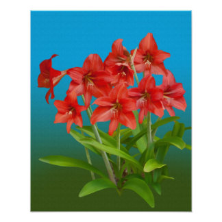 Red Day Lilies Print