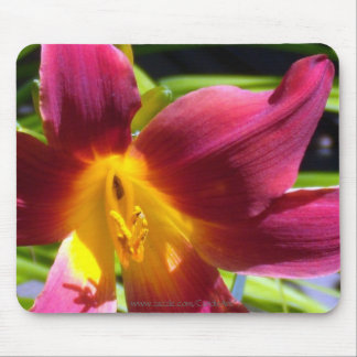 """Red Day Lily"" Mousepad"