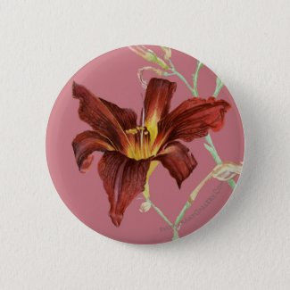 Red Daylily Button