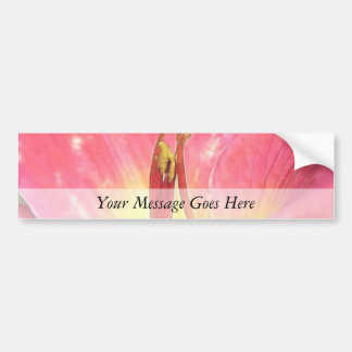 Red Daylily Close Up Car Bumper Sticker