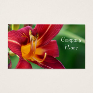 Red Daylily Flower business cards