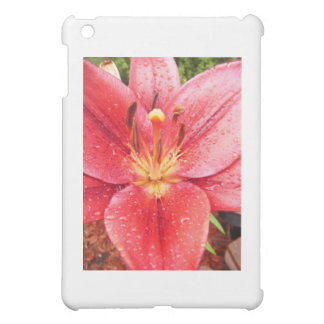 Red daylily with raindrops iPad mini case