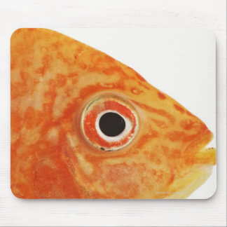 Red Deacon fish Mouse Pad