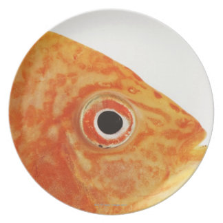 Red Deacon fish Plate