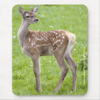 Red Deer Fawn Mousemat Mouse Pad