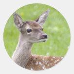 Red Deer Fawn Sticker