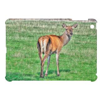 Red Deer & Field Wildlife Animal Design iPad Mini Cases