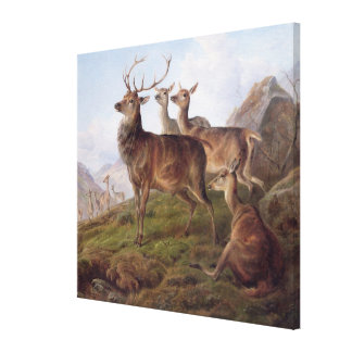 Red Deer in a Highland Landscape, 1872 (oil on can Canvas Print