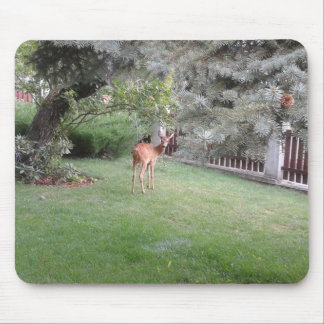 Red Deer in Slovakia Mouse Pad