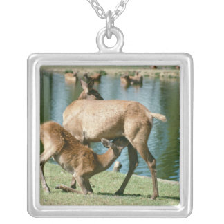 Red deer nursing offspring silver plated necklace