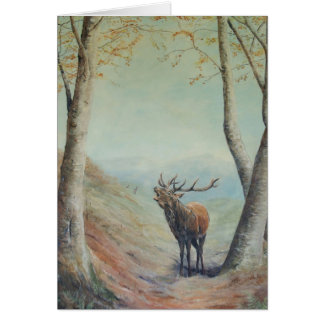Red deer stag bellowing in a highland glen. card