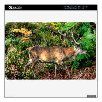 Red Deer Stag & Forest Wildlife Animal Design Skins For MacBook Air