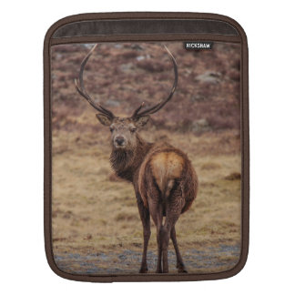 Red Deer Stag iPad Sleeve