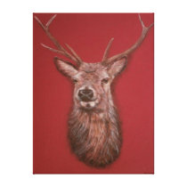 Red Deer Stag Stretched Canvas Print