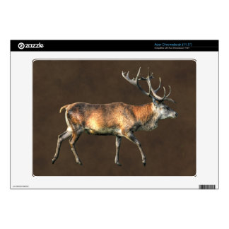 Red Deer Stag Wildlife Animal Design Decal For Acer Chromebook