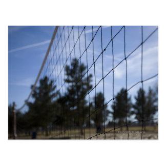 Red del voleibol tarjetas postales