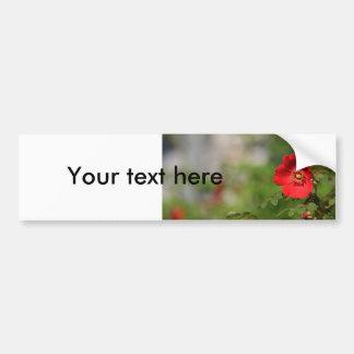Red Delight Bumper Sticker