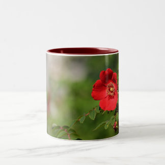 Red Delight Two-Tone Coffee Mug